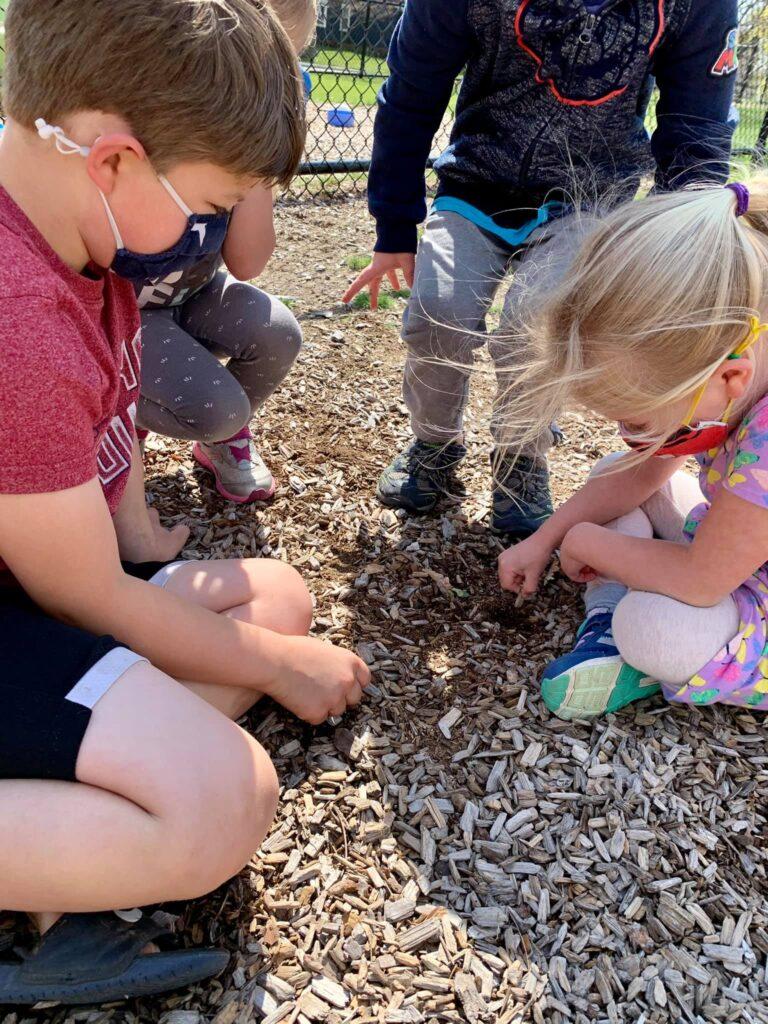 preschools in nature